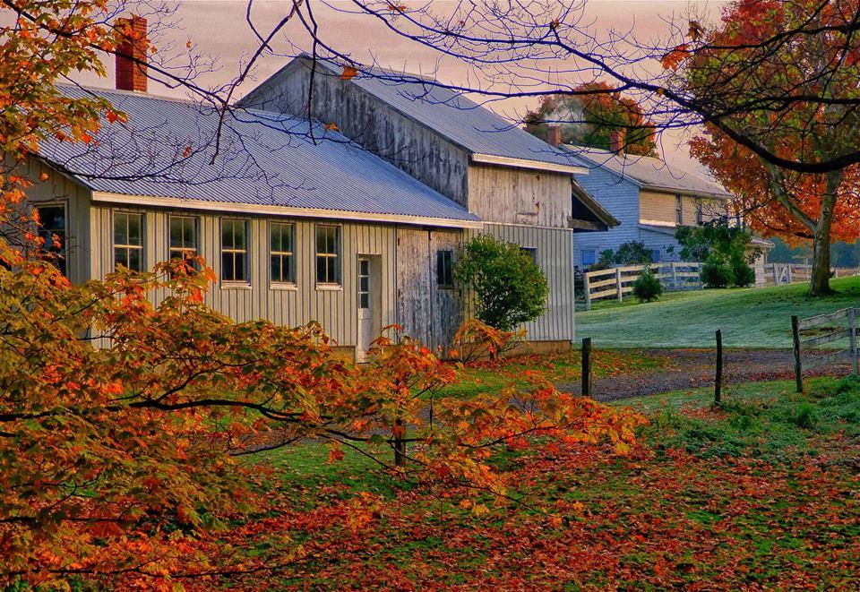 Be Still – An Amish Devotional