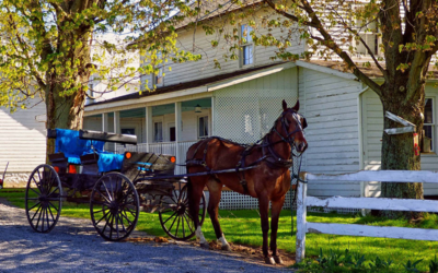 Model Yourself After an Amish Life