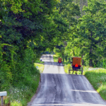Simple Side of Amish Life