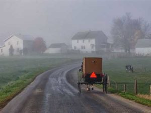 Amish Short Stories