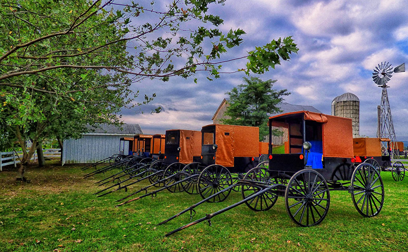 An Inside Look at an Amish Wedding