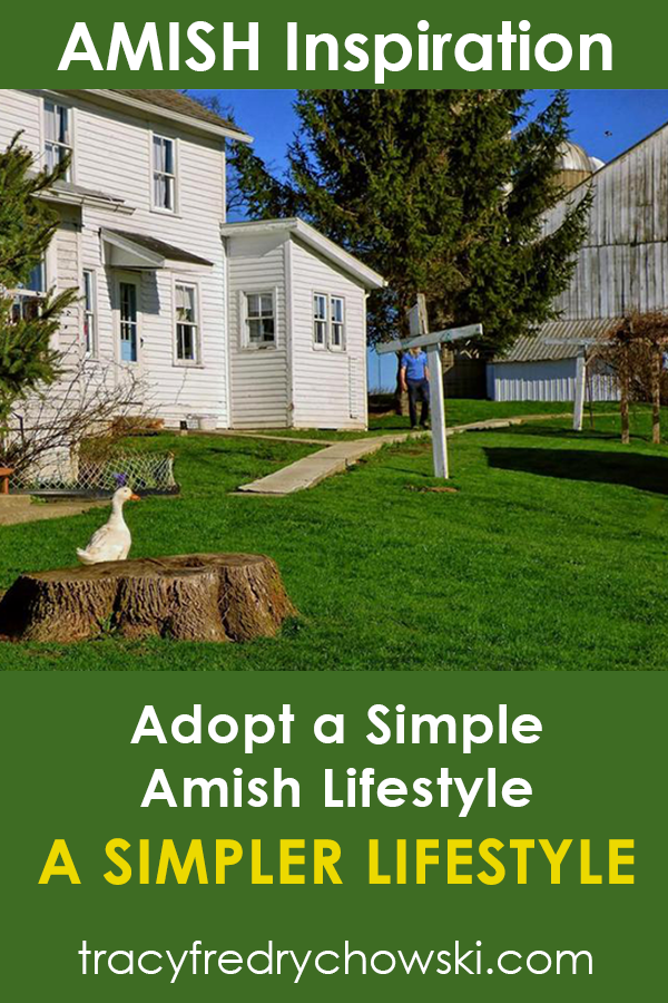 Adopt an Amish Lifestyle
