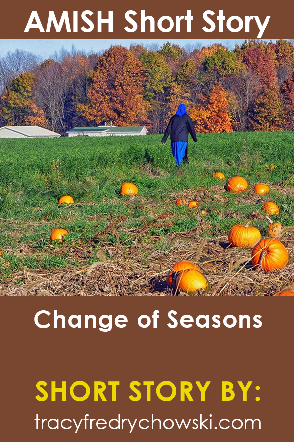 Amish Short Story: Change of Seasons