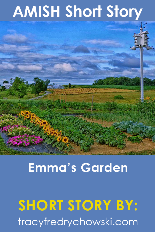 Emma's Garden: Amish Short Story
