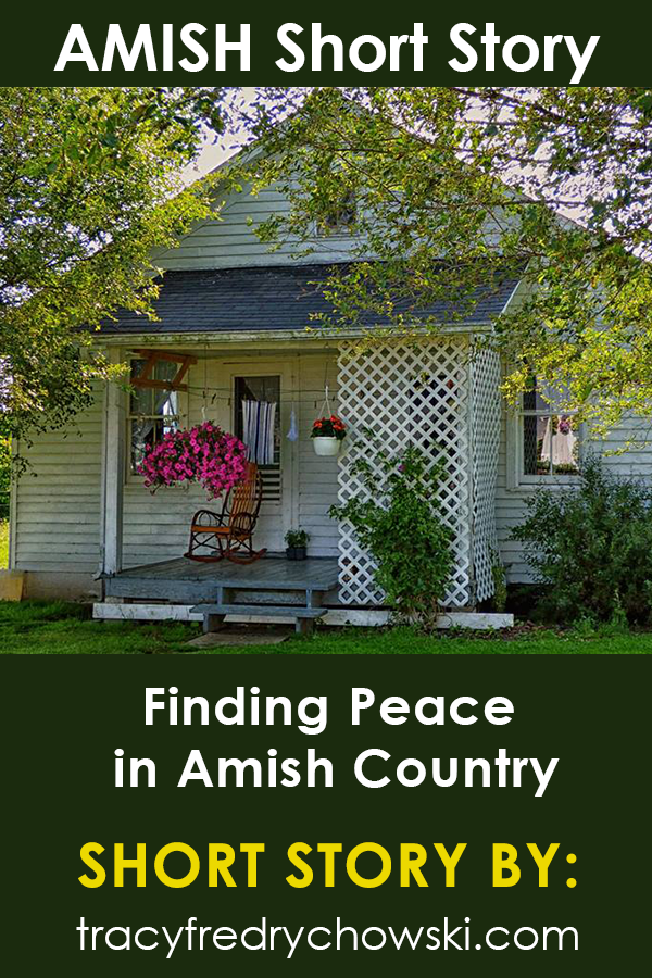 Amish Short Story: Finding Peace in Amish Country