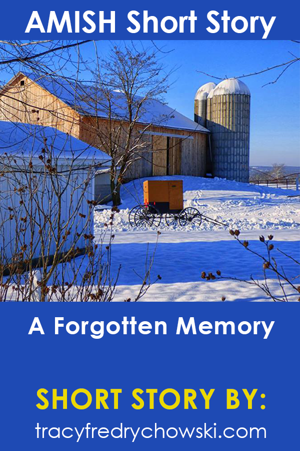 Amish Short Story: A Forgotten Memory
