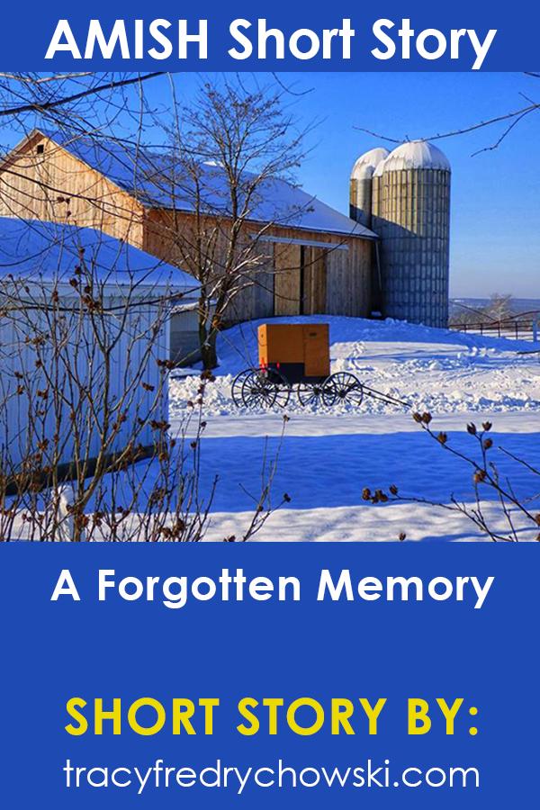 Amish Short Story: A Forgotten Memory