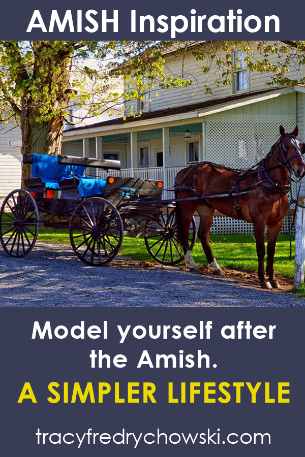 Model yourself after the Amish.