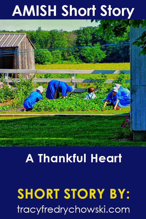 Amish Short Story - A Thankful Heart