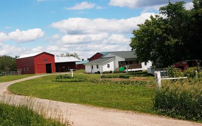 A Visit to Amish Country – Augusta, WI