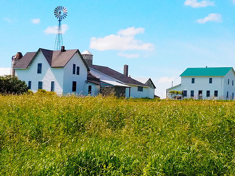 Amish Country Tour – Cashton & Tomah Wisconsin