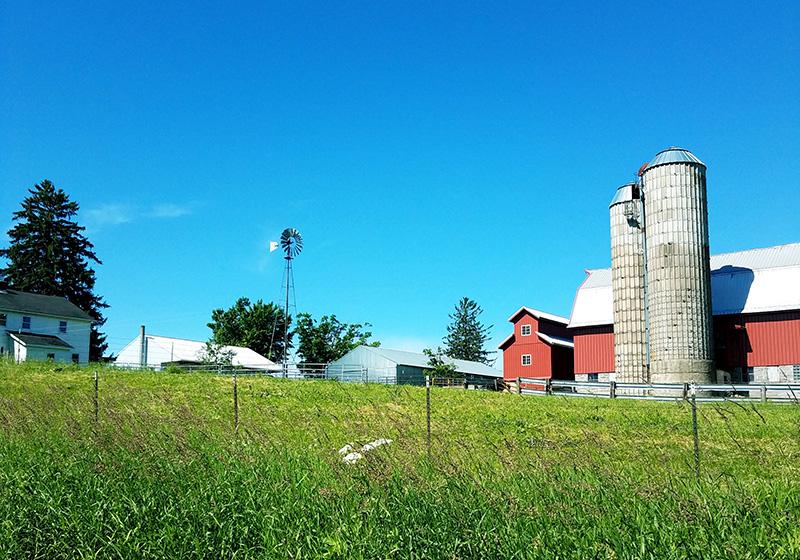 Cashton, WI Amish