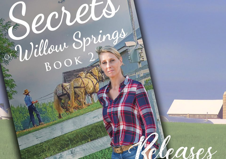 Secrets of Willow Sprinsg - Book 2