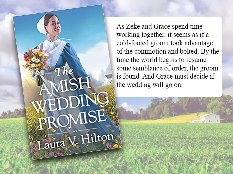 The Wedding Promise by Laura V. Hilton