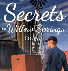 Secrets of Willow Springs - Book 3