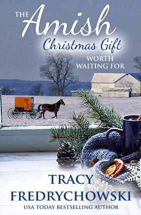 The Amish Christmas Gift Worth Waiting For